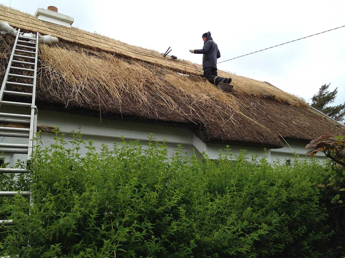 ronan finn working on thatching roof