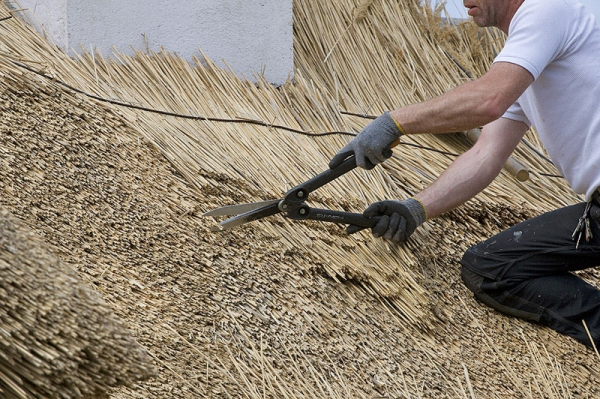 house thatching services