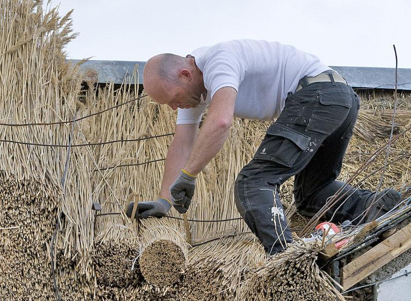 ronan finn thatching bales
