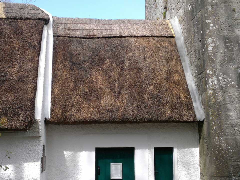Thatch Roof Longevity