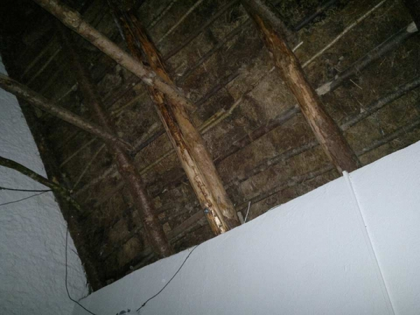 finn thatching service replaced roof rafter
